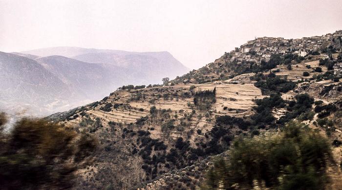 Delphi Tal des Xeropotamos (Pleistos)
