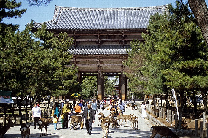 Todaiji-Tempel: Nandaimon-Tor Nara