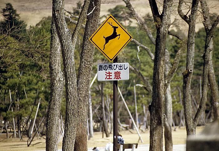 Nara-Park Nara