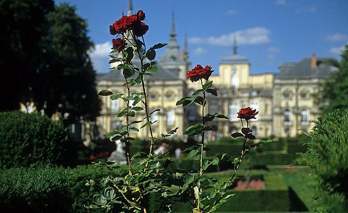 La Granja de San Ildefonso: Palastgarten - Rosen Palacio Real de San Ildefonso