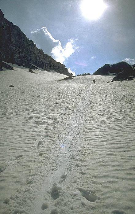 Rotohrsattel Scheebedeckter Abhang