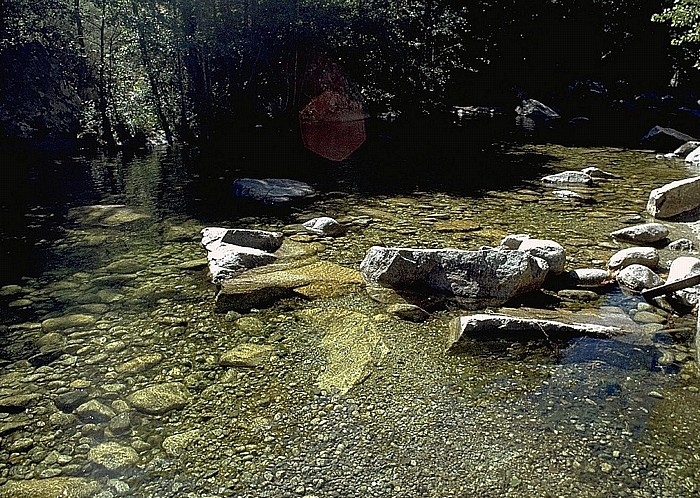 Restonica Wasserlauf