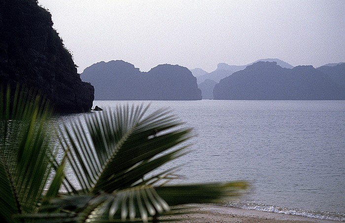 Halong Bay Affeninsel