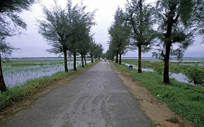 Hue Straßendamm durch Reisfelder