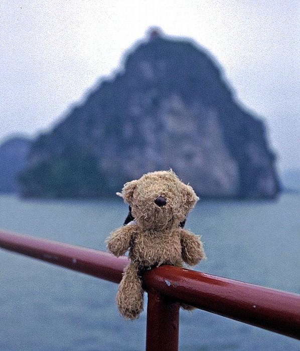 Halong Bay Teddy