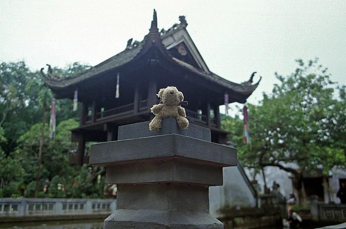 Hanoi Einsäulenpagode: Teddy
