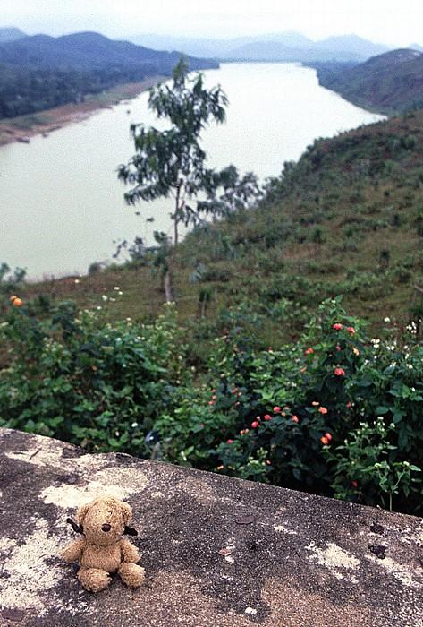 Hue Bunker Hill: Teddy Parfüm-Fluss