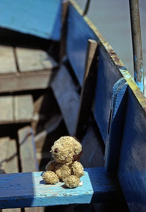 Mekong-Delta Teddy