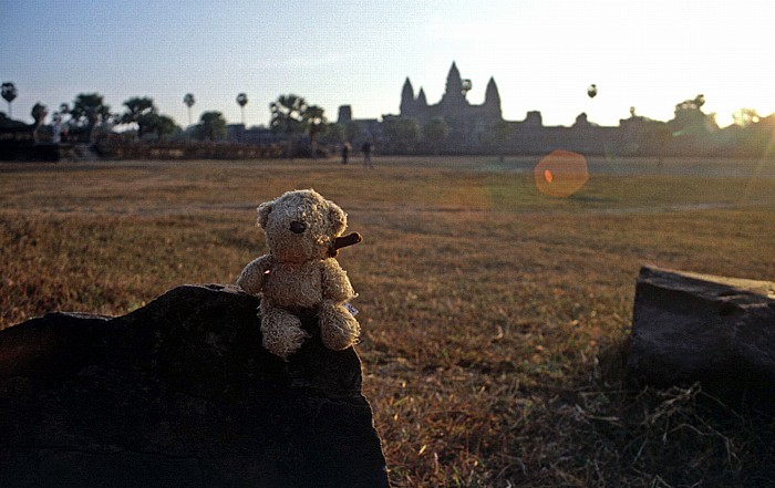 Angkor Wat: Teddy