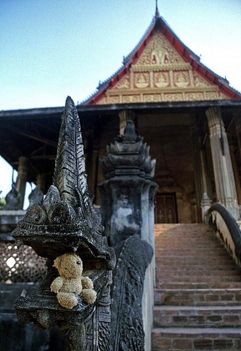 Vientiane Teddy