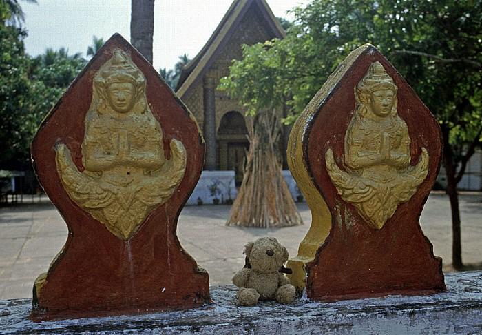 Luang Prabang Teddy