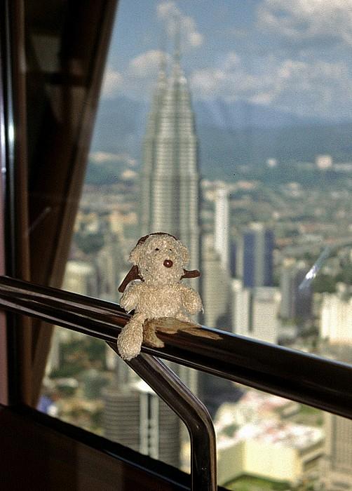 Kuala Lumpur Tower: Teddy Petronas Towers