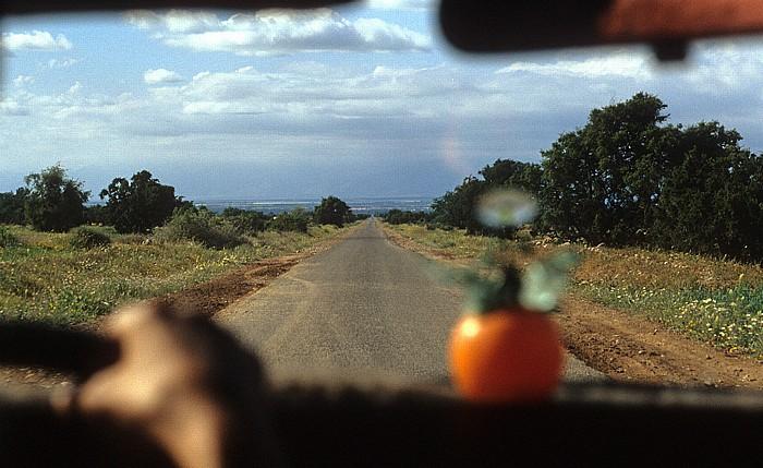 Taxifahrt von Taroudannt nach Tioute und zürck