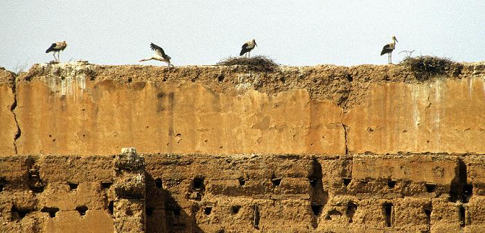 Marrakesch Palais el Badi: Storchennester auf den Mauerruinen Palais El Badi