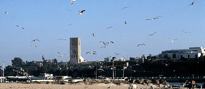 Salé Blick auf Rabat mit dem Hassan-Turm