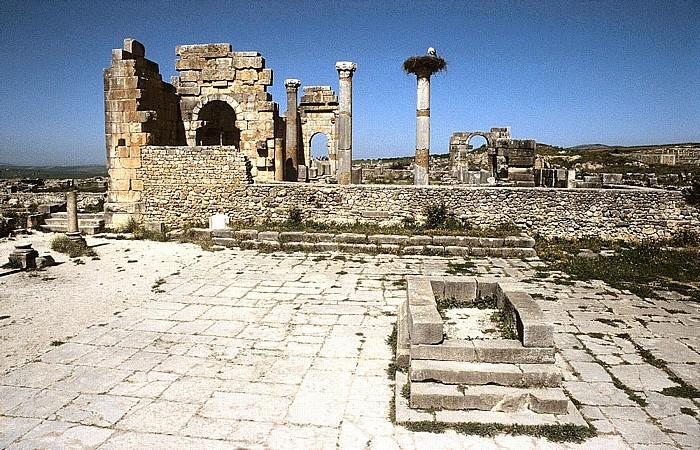 Volubilis Römische Ausgrabungen: Kapitol und Basilika
