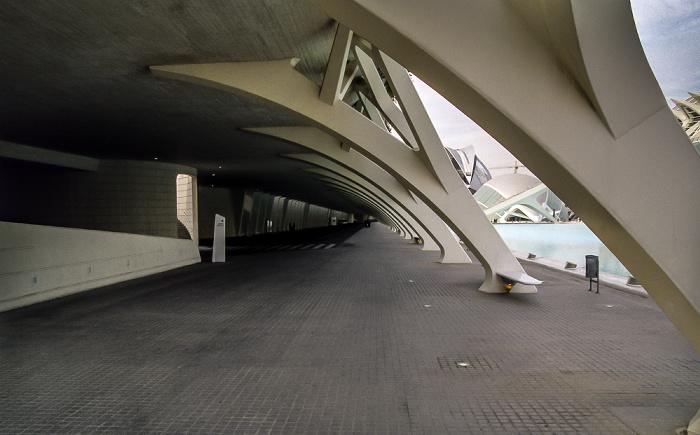 Unterbau von L'Umbracle Valencia
