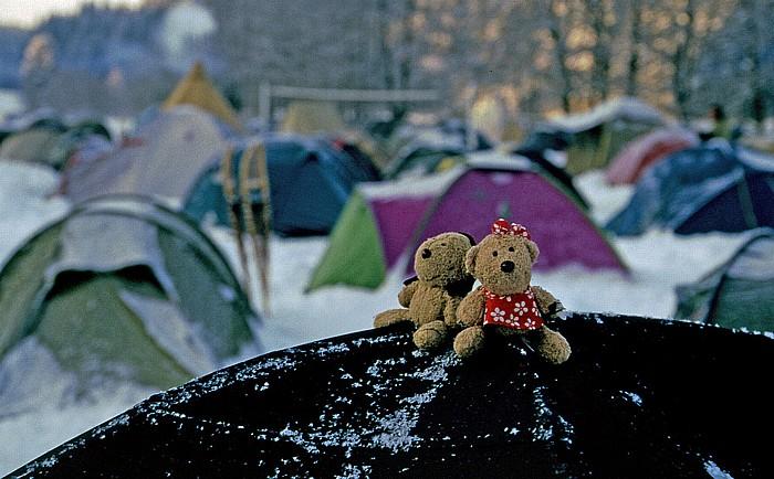 Effelter Teddy und Teddine auf dem Zeltdach