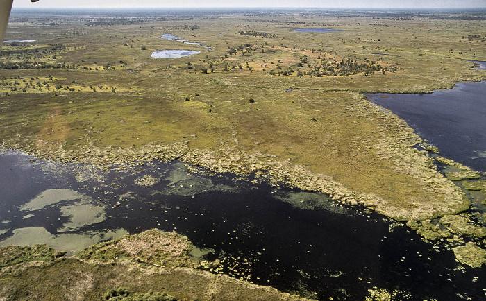 Okavango-Delta Luftbild aerial photo