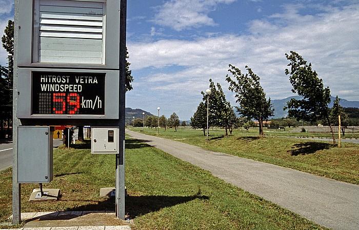 Von der Bora gekrümmte Bäume im Vipava-Tal