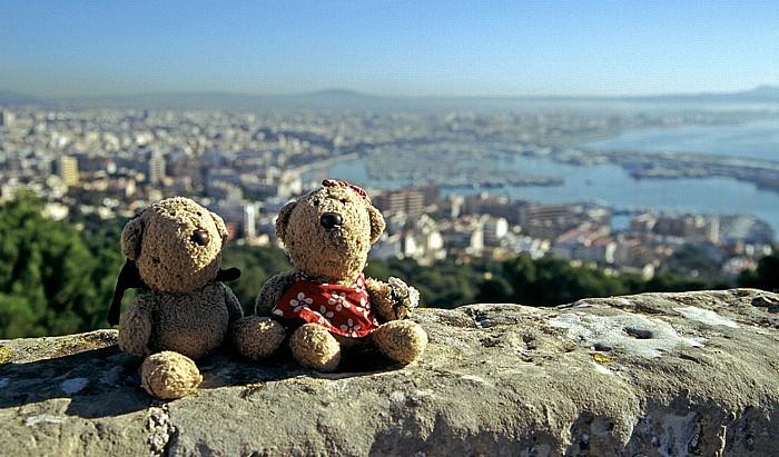 Palma de Mallorca Castell de Bellver: Teddy und Teddine Hafen