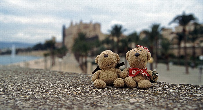 Palma de Mallorca Teddy und Teddine Kathedrale Parc de la Mar