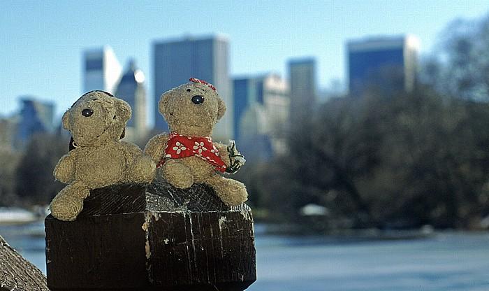New York The Lake (Central Park): Teddy und Teddine