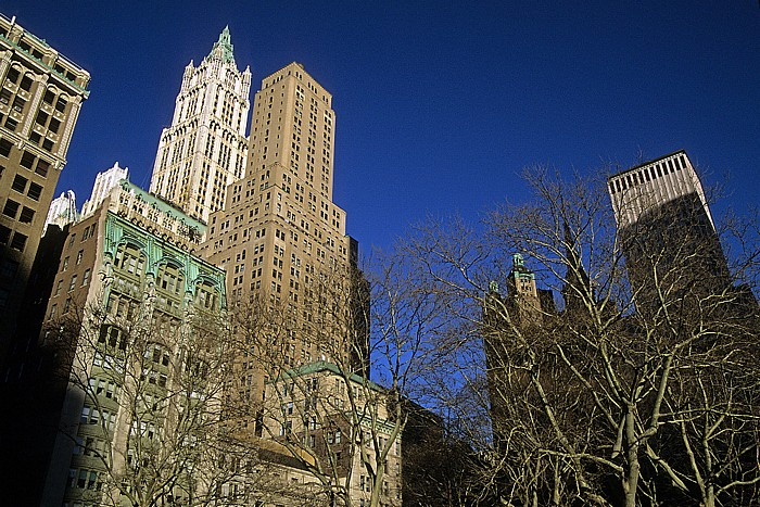 New York Links im Hintergrund das Woolworth Building
