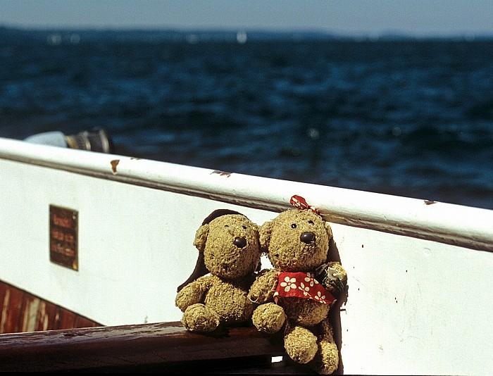 Starnberger See Teddy und Teddine