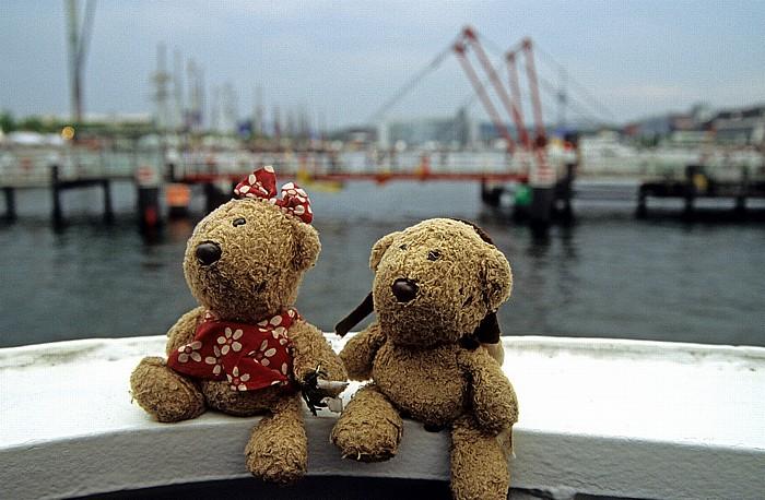 Kiel Teddine, Teddy Hafen Hörnbrücke
