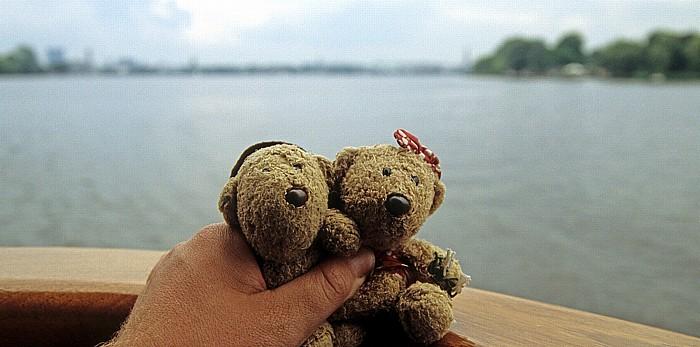 Hamburg Außenalster: Teddy und Teddine
