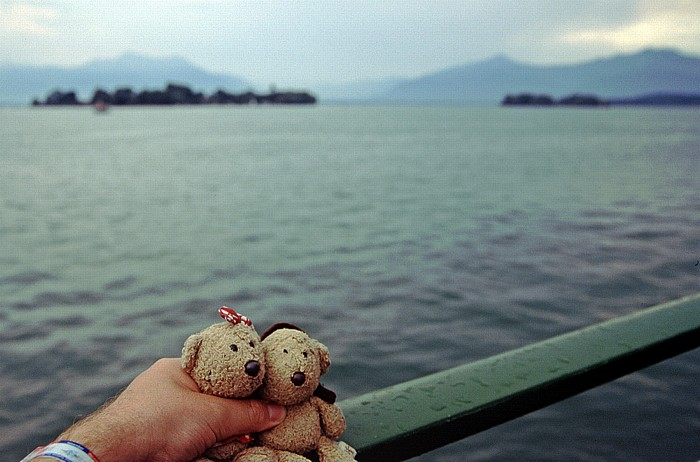 Chiemsee Teddine und Teddy