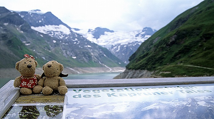 Kapruner Tal Teddine und Teddy am Stausee Mooserboden