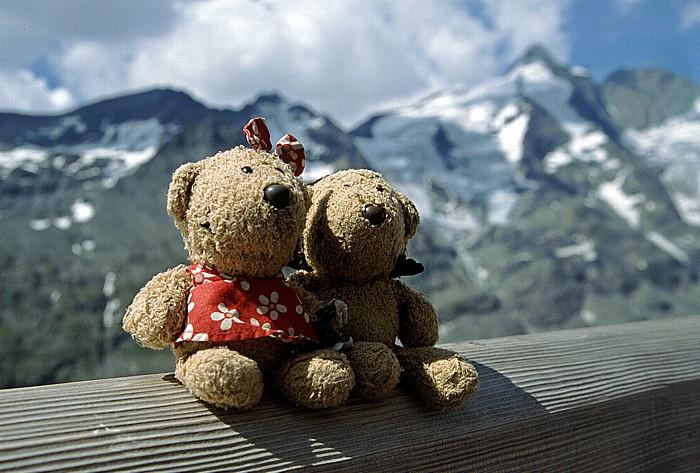 Franz-Josefs-Höhe Teddine und Teddy