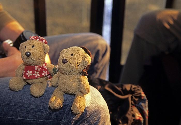 Ätna Seilbahn: Teddine, Teddy