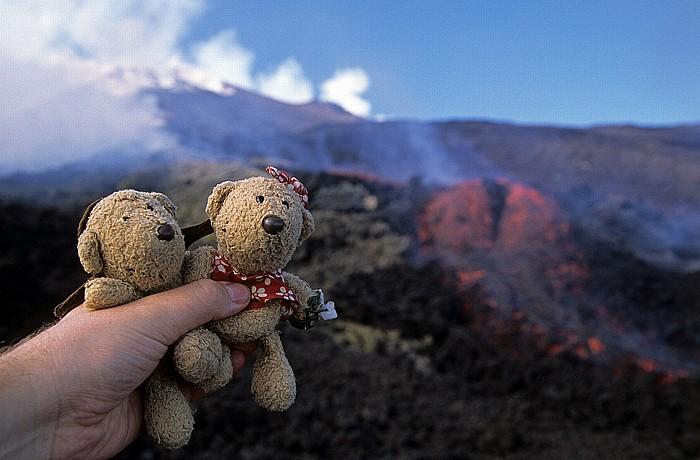 Ätna Valle del Bove: Teddy und Teddine