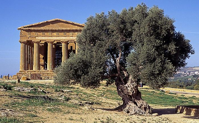 Agrigent Tal der Tempel: Concordia-Tempel