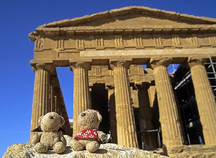 Agrigent Tal der Tempel: Concordia-Tempel: Teddy und Teddine