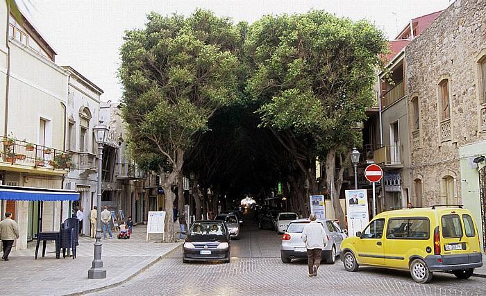 Sant' Antioco Von einem Blätterdach überwölbte Hauptstraße