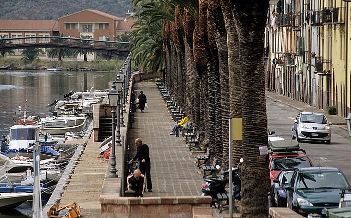 Bosa Palmenpromenade, links der Fiume Temo mit Fischerbooten