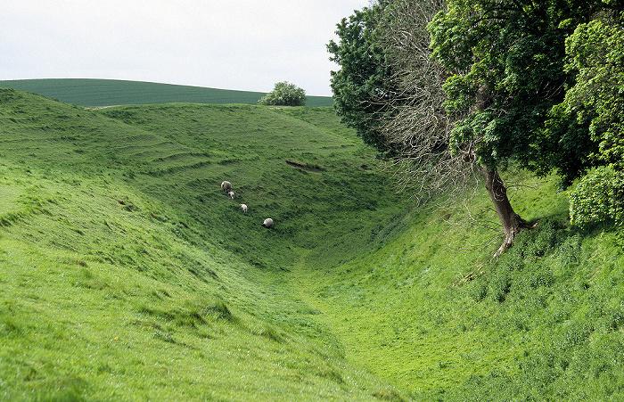 Avebury Äußerer großer Steinkreis: Südost-Sektor mit Erdwall und Schafe