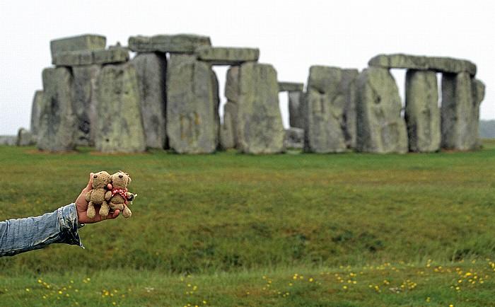 Stonehenge Teddy, Teddine