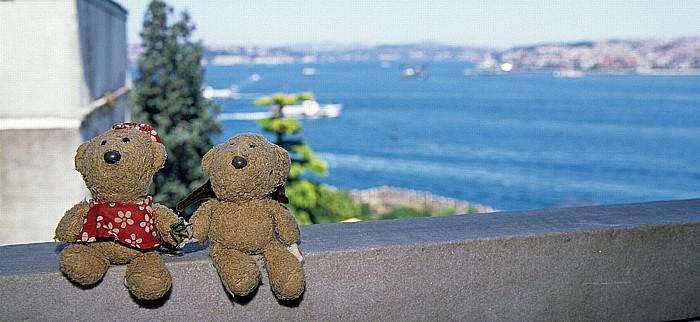 Istanbul Topkapi-Palast: Teddine, Teddy