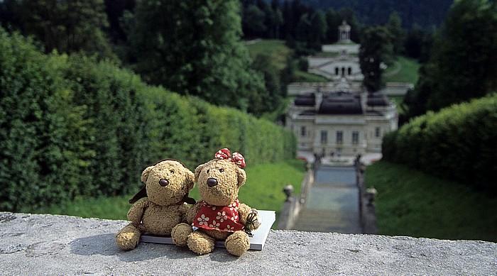 Linderhof Schlosspark (Nordhang): Teddy, Teddine