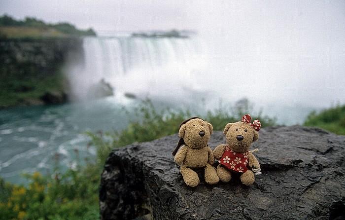 Niagara Falls Niagarafälle: Teddy und Teddine Goat Island Horseshoe Falls