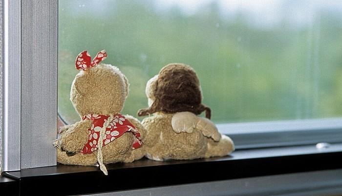 Ontario The Canadian: Teddine und Teddy