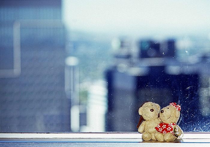 Blick aus dem Calgary Tower: Teddy und Teddine Downtown