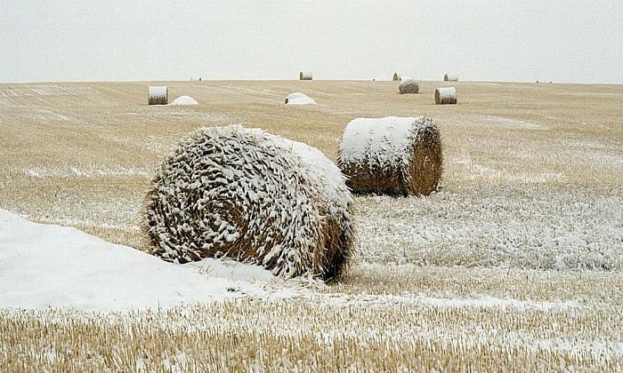 Pincher Creek Strohballen unter Schnee