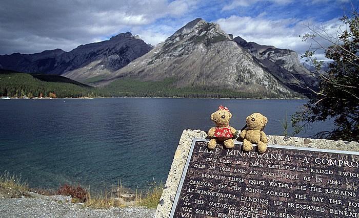 Banff National Park Lake Minnewanka: Teddine und Teddy