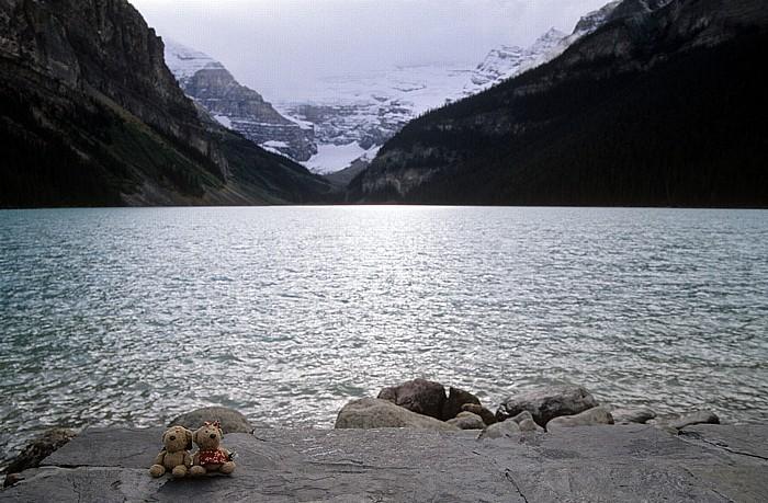 Banff National Park Lake Louise: Teddy und Teddine Mount Victoria